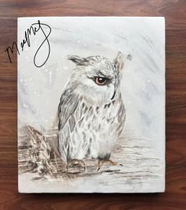 owl_LI